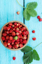 Wild Small Strawberry Of The Woods, Top View Royalty Free Stock Photo - 66283415