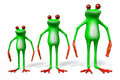 3D Cartoon Frogs - Dimensions Concept Royalty Free Stock Image - 66292356
