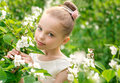Beautiful Little Girl In A White Dress Posing In The Grass Stock Photos - 66315943