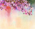 Watercolor Painting Cherry Blossoms, Japanese Cherry, Pink Sakura Royalty Free Stock Photography - 66439547