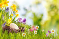 Happy Easter Card Or Advertising Royalty Free Stock Image - 66511426