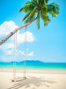 Beautiful Tropical Island Beach With Coconut Palm Trees And Swing Royalty Free Stock Photo - 66565395