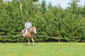 Learning To Ride A Horse Stock Image - 6662621