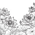 Beautiful Monochrome Vector Floral Frame With Lotus Stock Image - 66626771