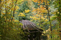 Fall Trestle Royalty Free Stock Images - 6676069