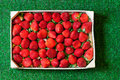 Strawberries In A Wooden Box On Grass Stock Image - 66713281