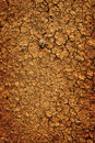 Background Of Dried Parched Earth Dirt Ground Stock Image - 66738081