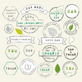 Raw And Vegan Stamps Set Royalty Free Stock Photography - 66761667