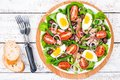 Homemade Salad Nicoise With Tuna, Anchovies, Tomatoes Royalty Free Stock Photos - 66780138