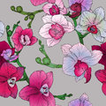 Tropic Floral Seamless Pattern With Hand Drawing Orchid Flowers Royalty Free Stock Photos - 66790488