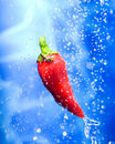 Chilli Pepper In A Water Splash Royalty Free Stock Photos - 6680838
