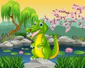 Cute Crocodile Posing On The Rock Royalty Free Stock Images - 66867319