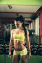 Beautiful Fit Woman Working Out In Gym - Girl In Fitness Royalty Free Stock Photo - 66876385