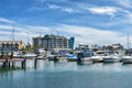 Dolphin Quay Stock Images - 66878574