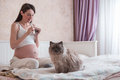 The Pregnant Young Woman Knits In A Bedroom Stock Photos - 66943693