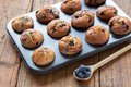 Blueberry Muffins Royalty Free Stock Photo - 66954875