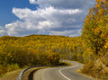 Autumn Wood And Road Royalty Free Stock Image - 6708416