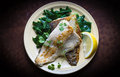 Fish Fillet With Chard Stock Image - 67053111