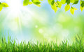 Abstract Sunny Spring Background Stock Image - 67063171