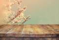 Wooden Rustic Table In Front Of Spring White Cherry Blossoms Tree. Vintage Filtered Image. Product Display And Picnic Concept Stock Photography - 67080492
