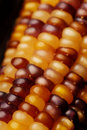 Indian Corn Stock Image - 6715971