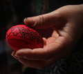 Easter Painted Egg Stock Image - 67155931