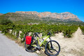 Xabia Javea Montgo Vineyards Biking MTB Royalty Free Stock Photos - 67176868