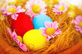 Beautiful Easter Still Life Royalty Free Stock Images - 67294029