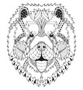 Chow Chow Dog Zentangle Stylized Head, Freehand Pencil, Hand Drawn, Pattern. Zen Art. Ornate Vector. Coloring. Stock Photos - 67493603