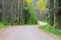 Dirt Road In The Forest. Stock Photos - 67494033