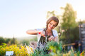 Young Gardener Cutting Little Flower Plant, Green Sunny Nature Stock Images - 67545514