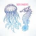 Hand-drawn Seahorse And Jellyfish Stock Images - 67574414