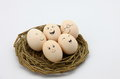 Egg Stock Images - 67591824