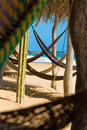 Hammocks Royalty Free Stock Images - 6764259