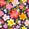 Abstract Seamless Pattern With Isolated Hand Drawn Flowers. Stock Images - 67800614