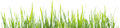 Green Grass Panorama Isolated On White Background Royalty Free Stock Photography - 67822337