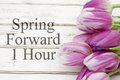Spring Time Change Stock Images - 67865764