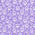 Purple Doggy Paw Print Tile Pattern Repeat Background Royalty Free Stock Photos - 67894998