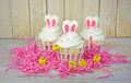 Easter Bunny Ears On Cupcakes Stock Photography - 67932132