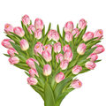 Tulips Flowers In A Heart Shape. EPS 10 Royalty Free Stock Photo - 67940915