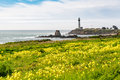 Pigeon Point Lighthouse Royalty Free Stock Photo - 67984925