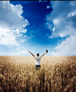 Man Holding Up Bible In A Wheat Field Stock Photography - 68043212
