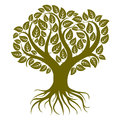 Vector Art Illustration Of Branchy Tree With Strong Roots. Tree Stock Photo - 68046440