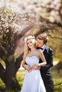 Man And Woman In The Blossoming Garden Royalty Free Stock Photos - 68163828