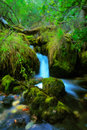 Brook In The Village Of Vevcani Royalty Free Stock Photos - 6823248