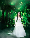 Princess In The Forest Royalty Free Stock Images - 68251349