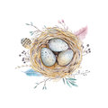 Hand Drawn Watercolor Art Bird Nest With Eggs , Easter Design. Royalty Free Stock Photography - 68264787