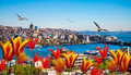 Istanbul The Capital Of Turkey Stock Image - 68330791