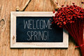 Flowers And Blackboard With The Text Welcome Spring Stock Image - 68442871