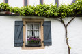Old Window With Shutters, Flower Basket And Grapevine, Germany Stock Photo - 68558170